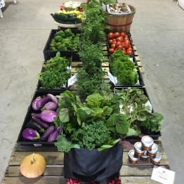 FarmShare-CSA-Week 3-1200x900_1215-001_1