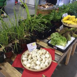 FarmShare-CSA-Week 3-1200x900_1215-005_1