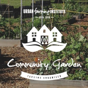 community-garden-main-img