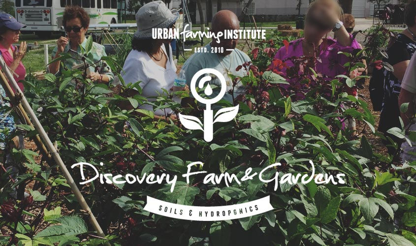 discovery-farm-garden-main-img-2