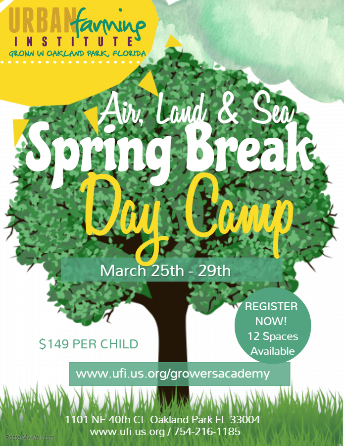 UFI Spring Break Camp